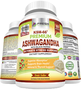 Best Ashwagandha KSM66 Supplement
