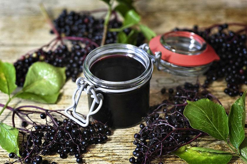 Health Benefits of Elderberry Extract (Sambucus Nigra)