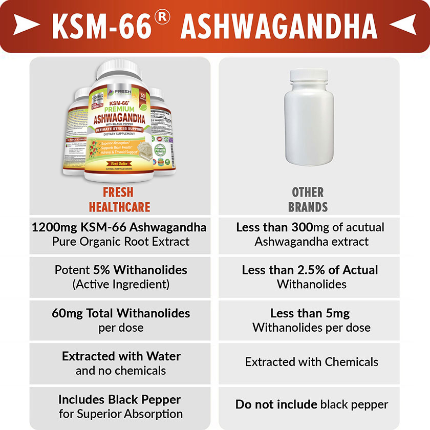 The Best Ashwagandha KSM-66