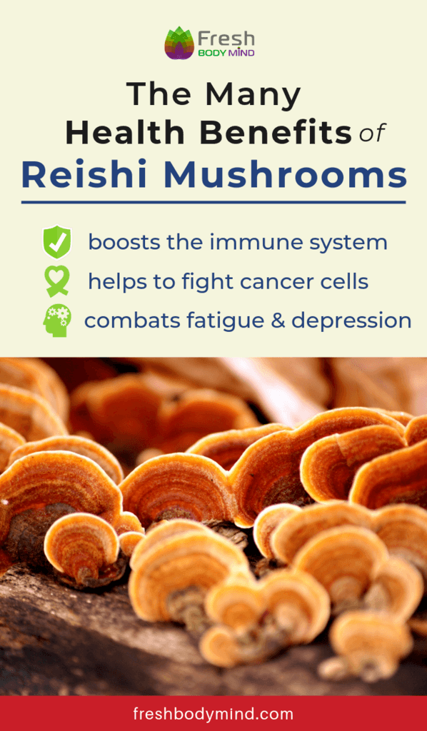 Health Benefits of Reishi Mushrooms