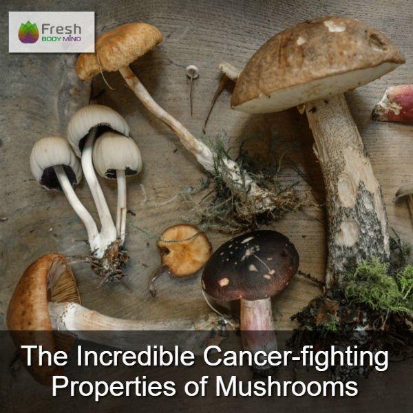 Cancer-Fighting Properties of Mushrooms