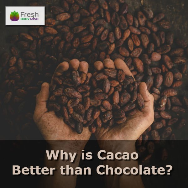 Why is Cacao Better than Chocolate?