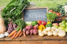 The Health Benefits of going Organic