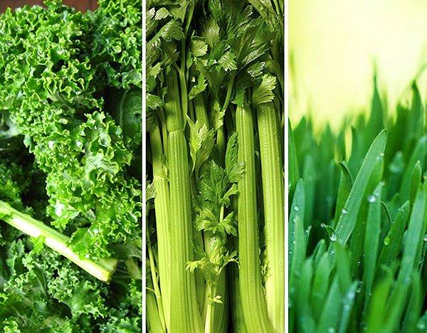 Green Vegetable Inspirational Meals