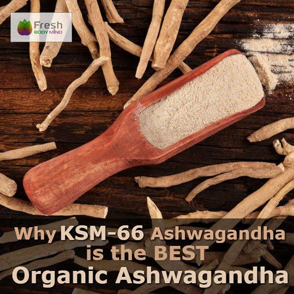 Why KSM-66 Ashwagandha is the Best Organic Ashwagandha Supplement
