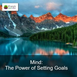 Mind-The-Power-of-Setting-Goals