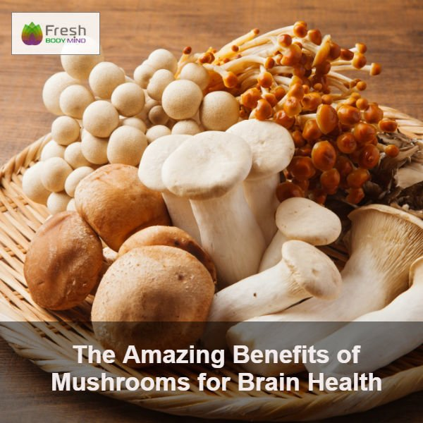Mushrooms for Brain Health