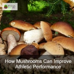 How Mushrooms Can Improve Athletic Performance