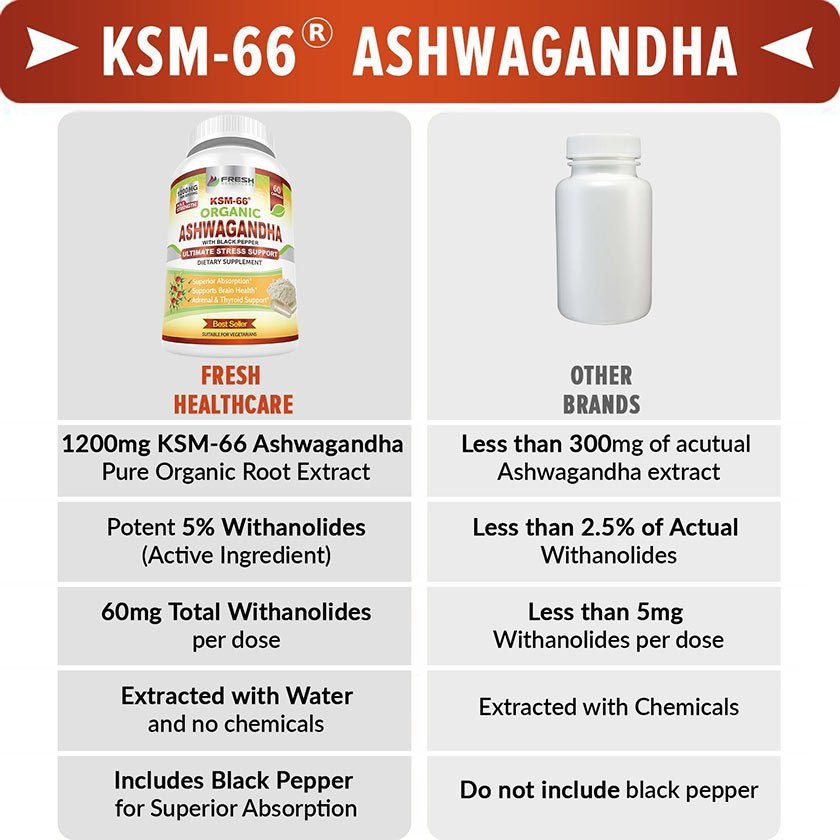 The Best Ashwagandha KSM66