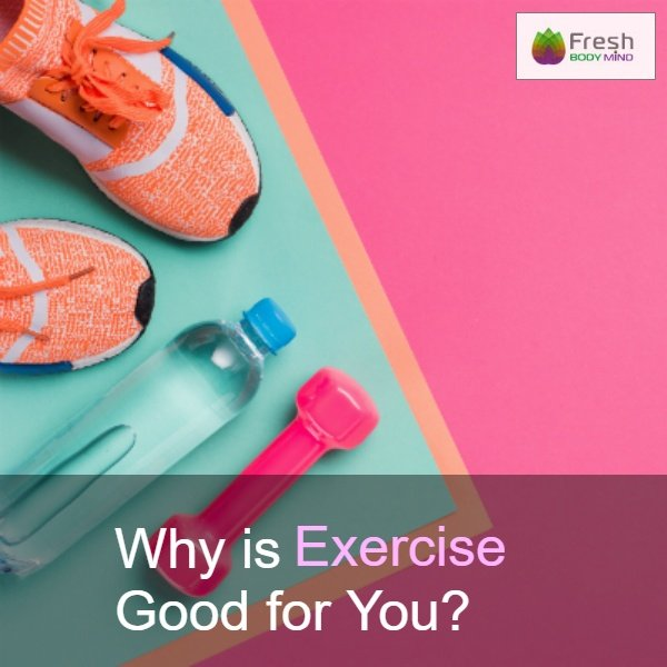 Why is Exercise Good for You?
