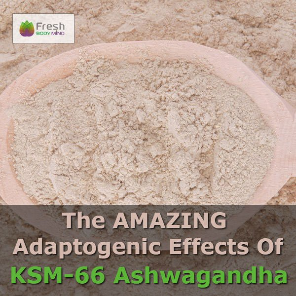 The Amazing Adaptogenic Benefits of KSM-66 Ashwagandha