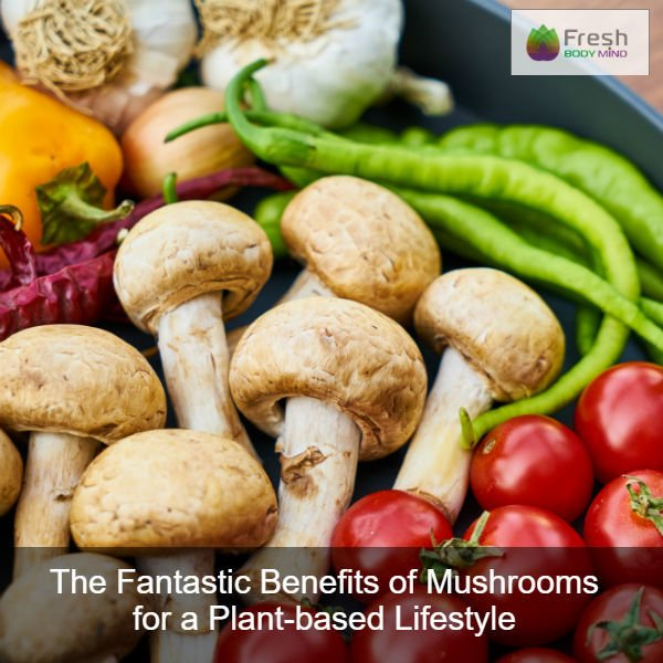The Fantastic Benefits of Mushrooms for a Plant-Based Lifestyle