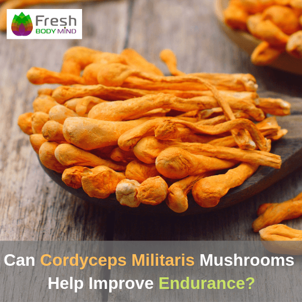 Can Cordyceps Miltaris Mushrooms Improve Endurance?