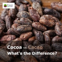 cocoa cacao what's the difference