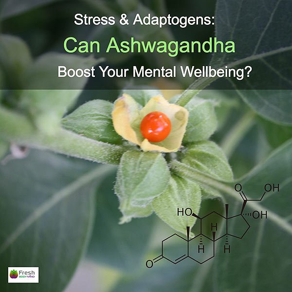 Adaptogens and Mental Health Wellbeing