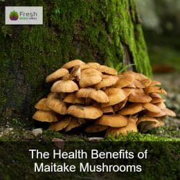 The Health Benefits of Maitake Mushrooms