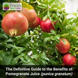 The Definitive Guide to the Health Benefits of Pomegranate Juice (punica granatum)