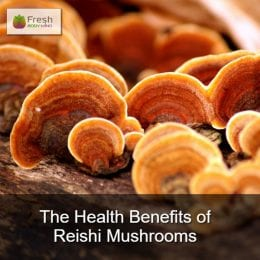 The Many Health Benefits of Reishi Mushrooms