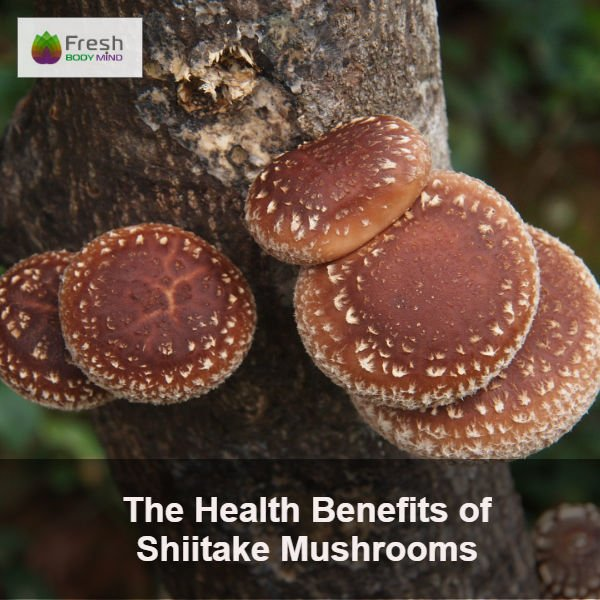 Health Benefits of Shiitake Mushrooms
