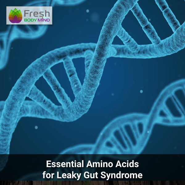 Essential Amino Acids for Leaky Gut Syndrome