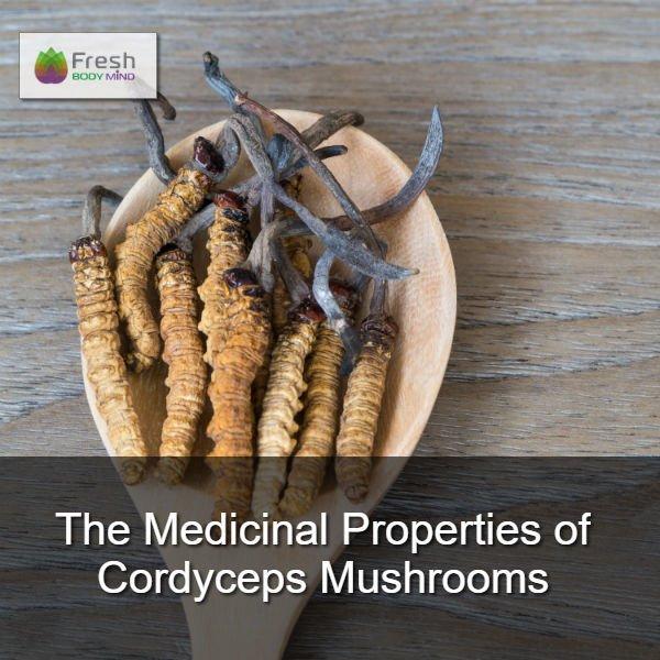The Medicinal Properties of Cordyceps Mushrooms