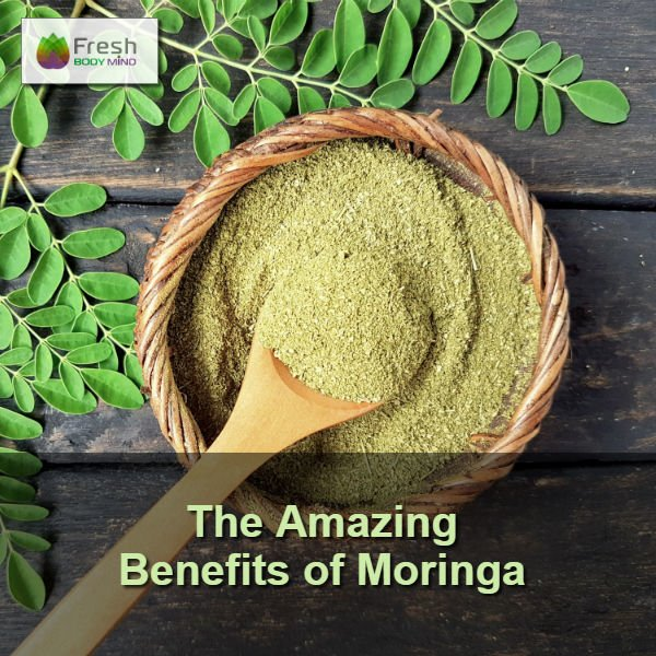 The Amazing Benefits of Moringa Oleifera