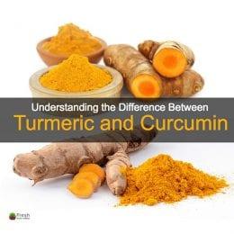 Turmeric root & powder placed next to curcumin root powder