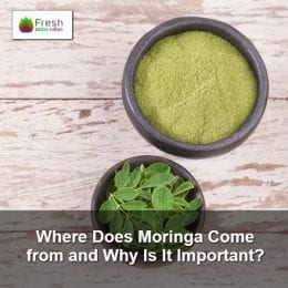 Where Does Moringa come from and Why is it Important?